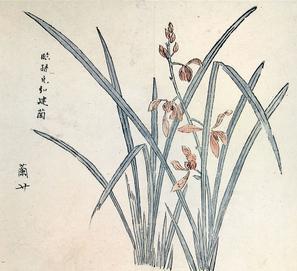Orchid by Hu Zhengyan